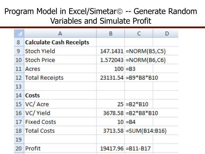 Program Model in Excel/Simetar