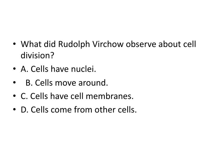What did Rudolph Virchow observe about cell division?