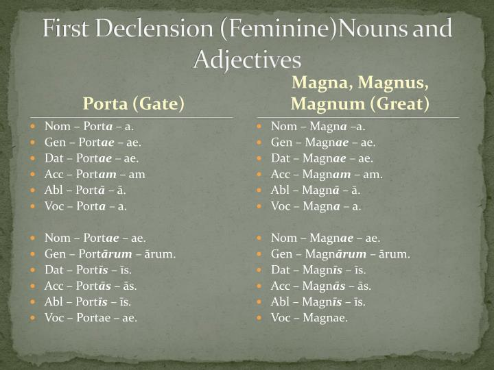 First Declension (Feminine)Nouns and Adjectives