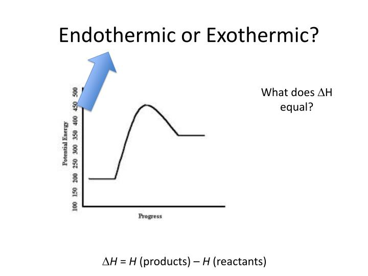 Endothermic or Exothermic?