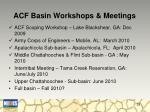 acf basin workshops meetings