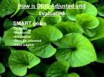 how is ddis adjusted and evaluated