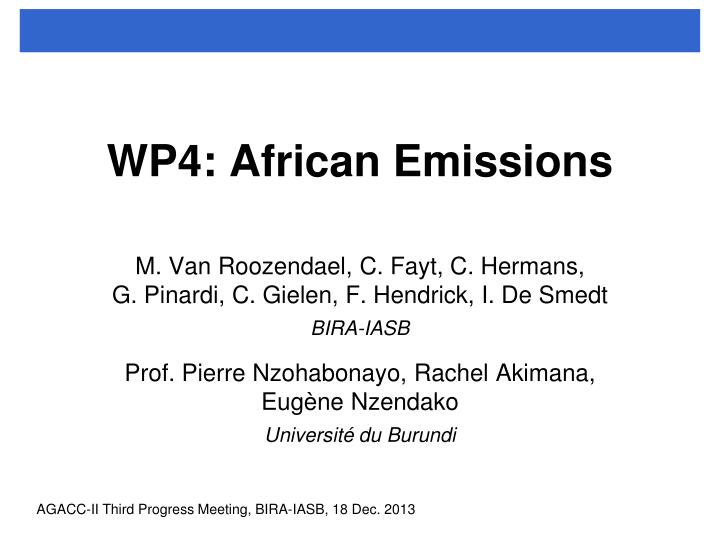 wp4 african emissions