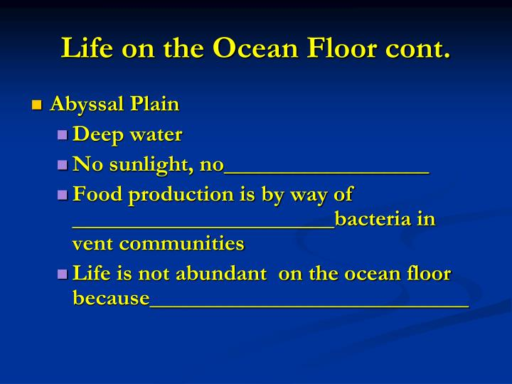 Life on the Ocean Floor cont.