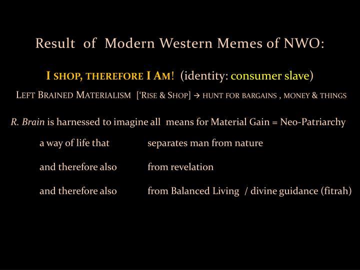 Result  of  Modern Western Memes of NWO: