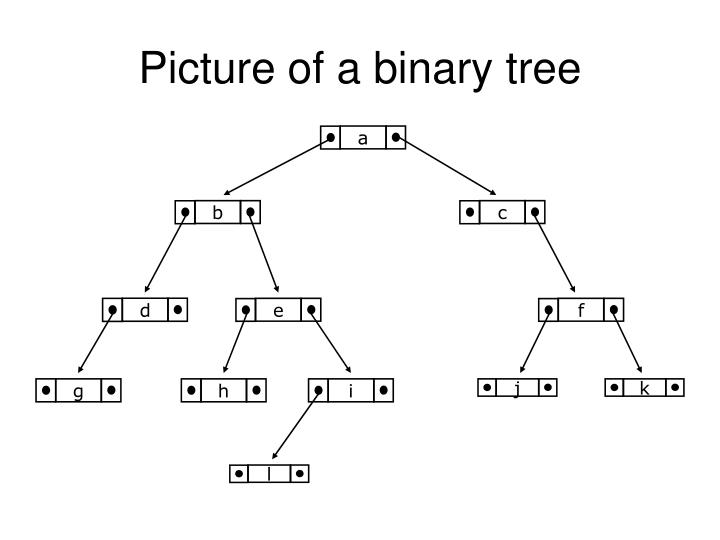 Picture of a binary tree