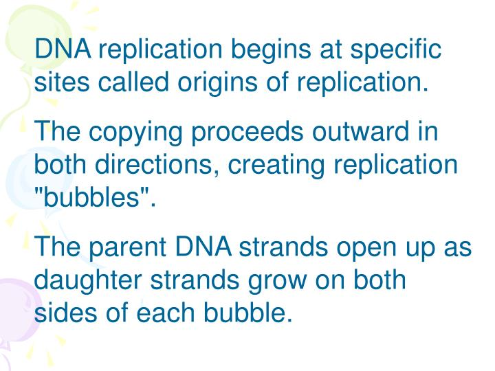 DNA replication begins at specific sites called origins of replication.