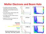 moller electrons and beam halo
