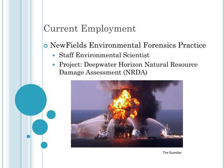 Current Employment