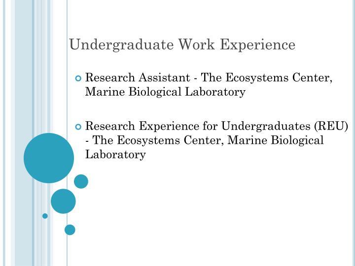 Undergraduate work experience