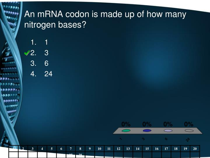 An mRNA codon is made up of how many nitrogen bases?