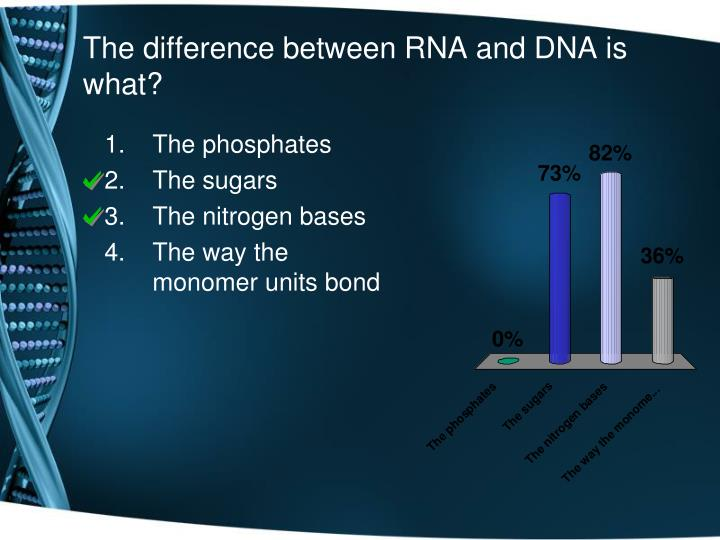 The difference between RNA and DNA is what?