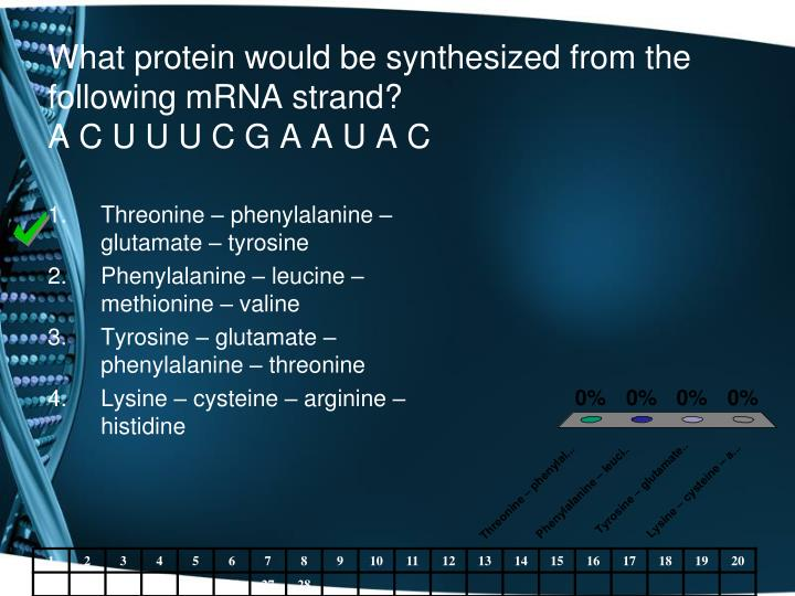 What protein would be synthesized from the following mRNA strand?
