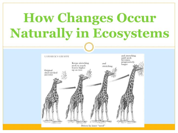 How changes occur naturally in ecosystems