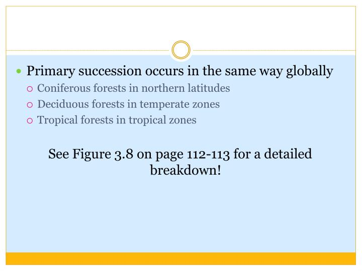 Primary succession occurs in the same way globally
