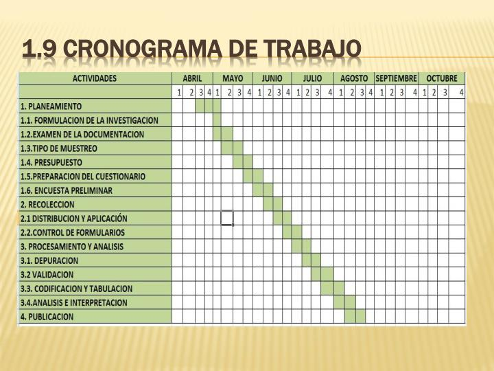 1.9 CRONOGRAMA DE TRABAJO