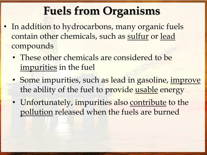 Fuels from Organisms