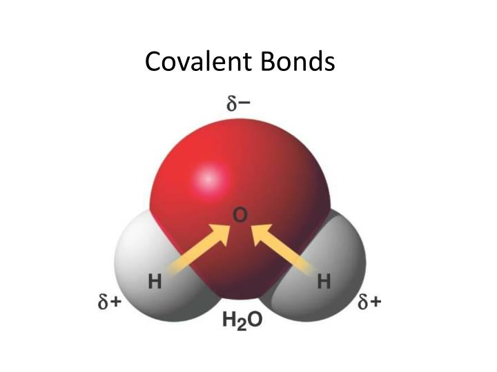 Ppt covalent bonds powerpoint presentation id 2654690 for Ptable stats