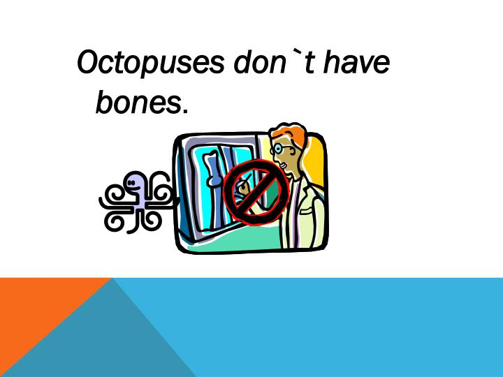 Octopuses don`t have bones