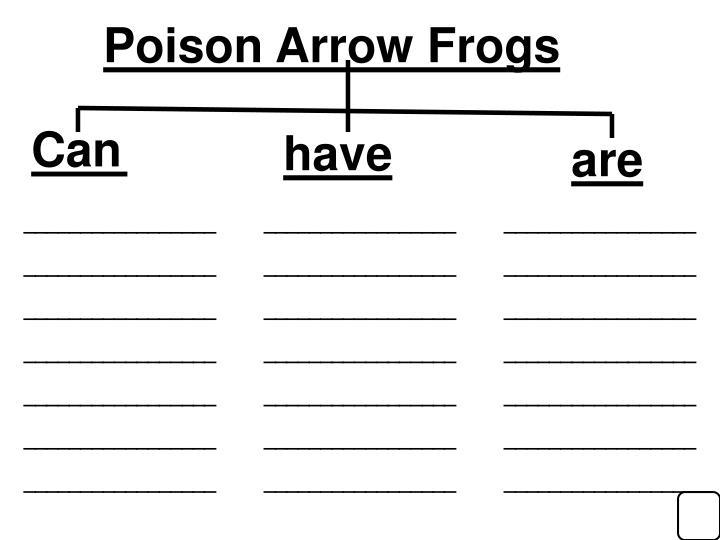 Poison Arrow Frogs