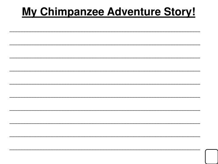 My Chimpanzee Adventure Story!