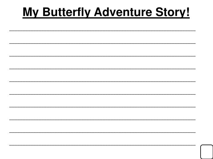 My Butterfly Adventure Story!