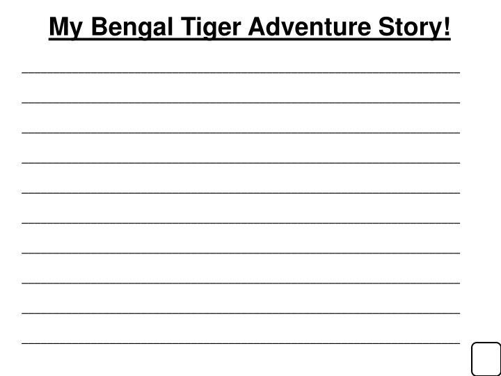 My Bengal Tiger Adventure Story!