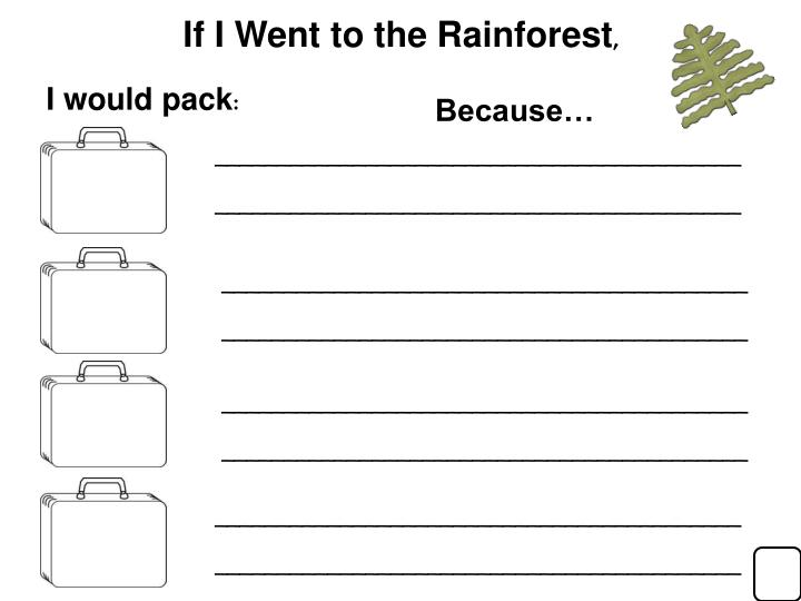 If I Went to the Rainforest
