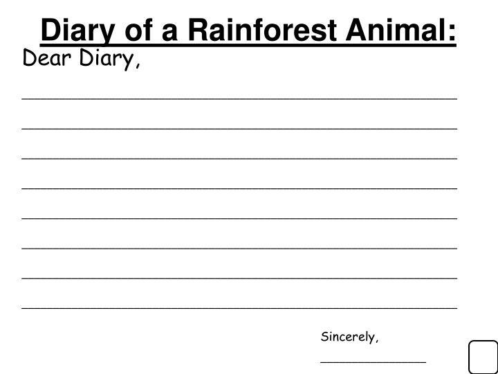 Diary of a Rainforest Animal: