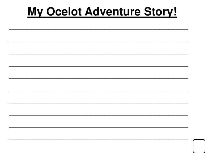 My Ocelot Adventure Story!