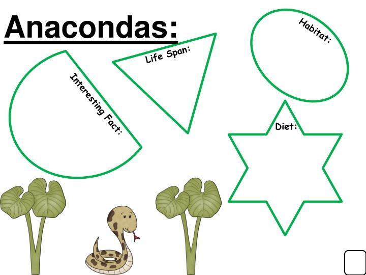 Anacondas: