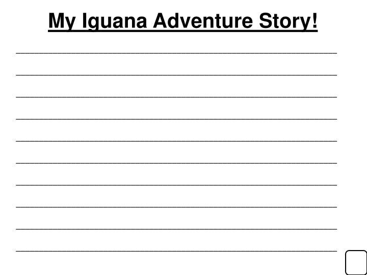 My Iguana Adventure Story!