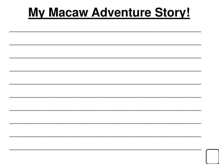 My Macaw Adventure Story!