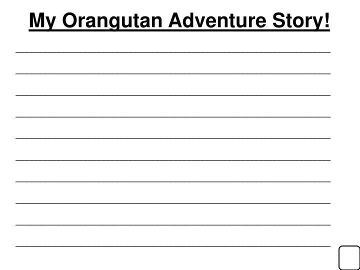 My Orangutan Adventure Story!