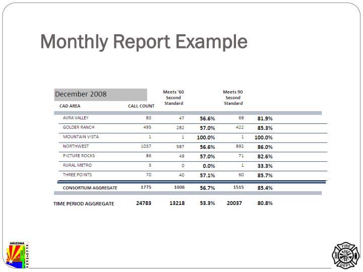 Monthly Report Example