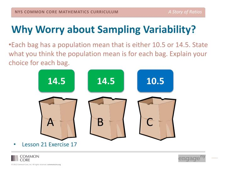 Why Worry about Sampling Variability?