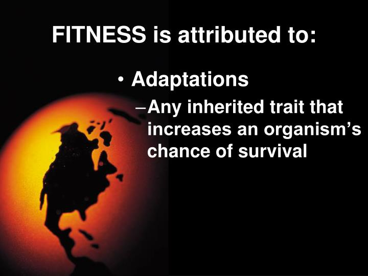 FITNESS is attributed to:
