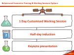 behavioural economics training working sessions options