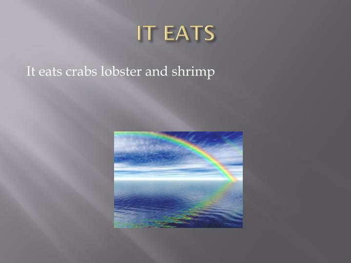 IT EATS