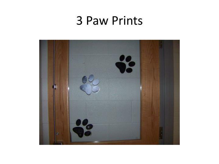 3 Paw Prints