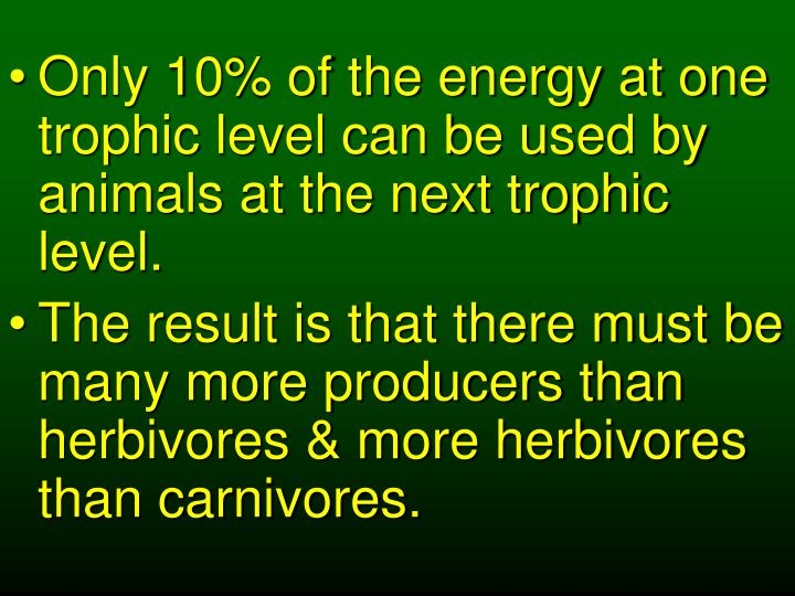 Only 10% of the energy at one trophic level can be used by animals at the next trophic level.