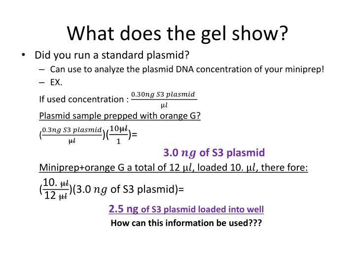 What does the gel show