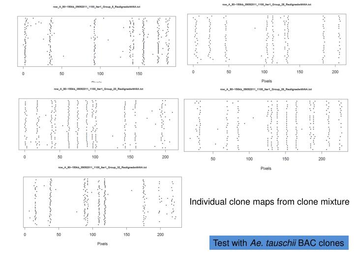 Individual clone maps from clone mixture
