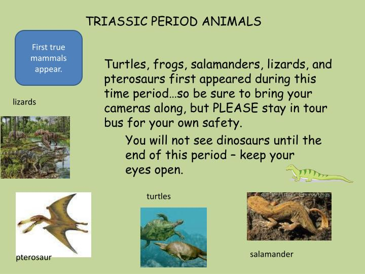 TRIASSIC PERIOD ANIMALS