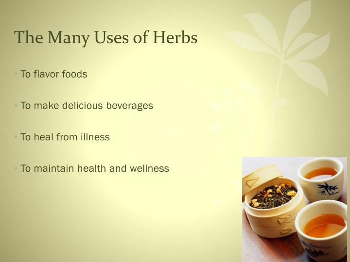 The many uses of herbs