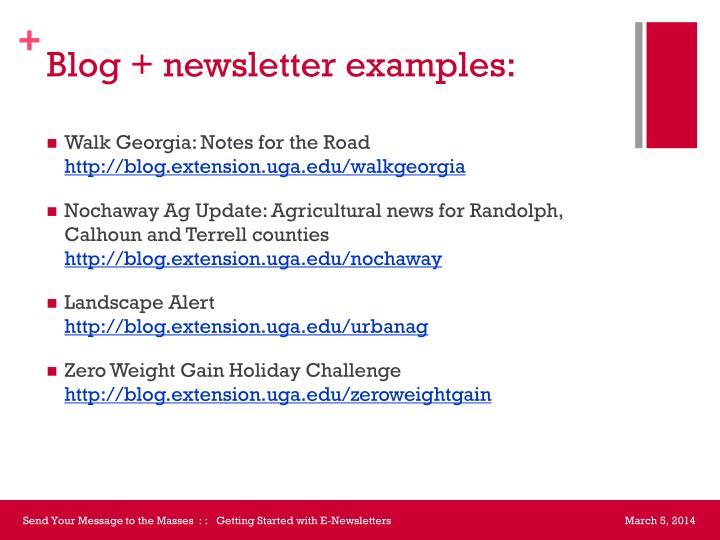 Blog + newsletter examples: