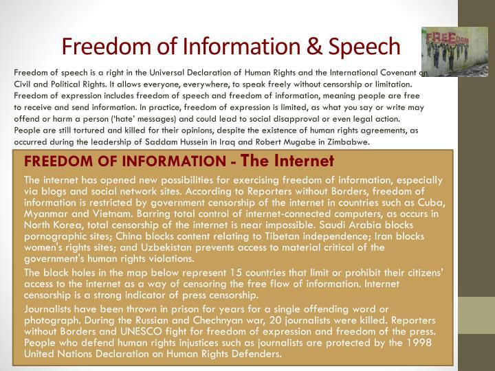 Freedom of information speech
