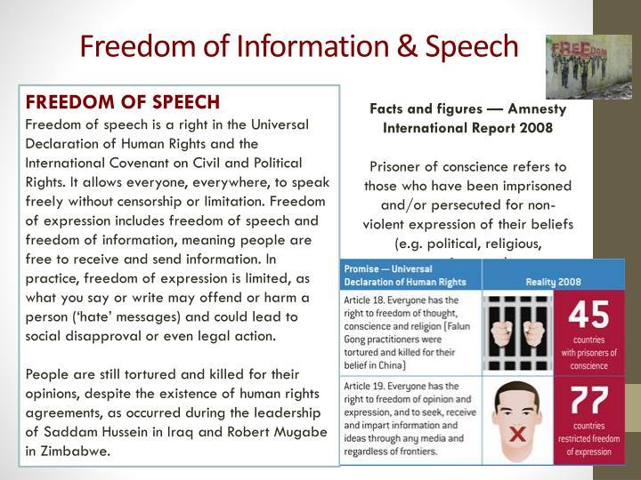 Freedom of information speech1