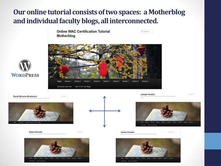 Our online tutorial consists of two spaces:  a