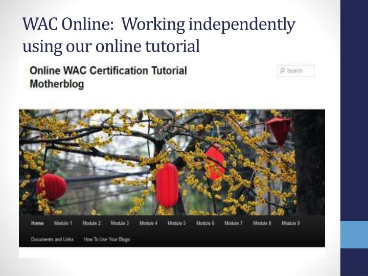 WAC Online:  Working independently using our online tutorial